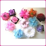 ha09 Assorted Flower Barrettes and Hair Clips (12pc.)